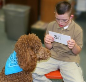 Boy reading to therapy dog